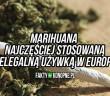 marihuana-najczesciej-uzywana-w-europie