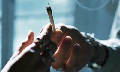 użycie marihuany wśród duńskiej młodzieży