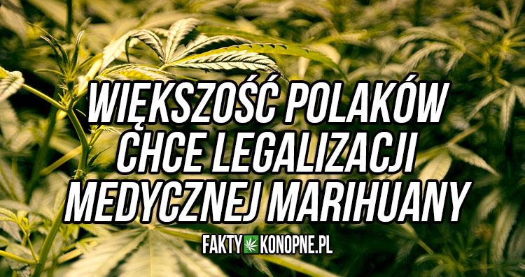 medyczna-marihuana-w-polsce-wiekszosc-68-chce-legalizacji