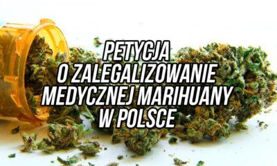 Petycja o legalizacje medycznej marihuany w Polsce