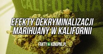 Efekty dekryminalizacji marihuany w Kalifornii