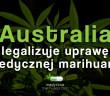 australia-legalizuje-uprawe-medycznej-marihuany