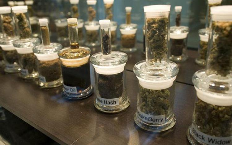 Sklepy z marihuaną w stanie Oregon wygenerowały przychód ponad 11 milionów dolarów