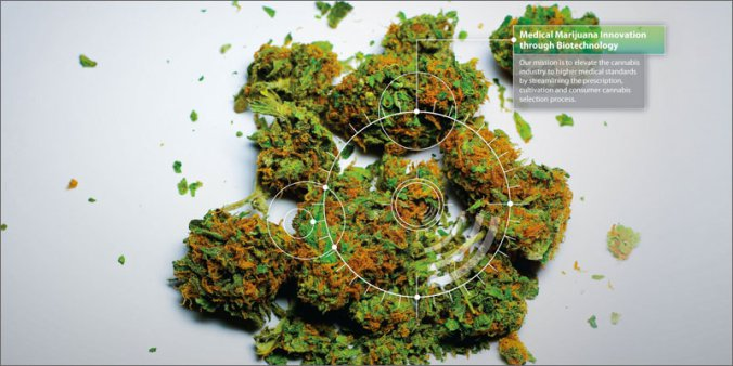potbiotics-weed-1