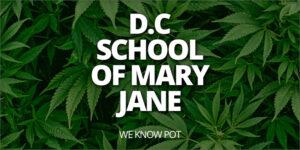 Nowa firma School of Mary Jane uczy ludzi, jak palić marihuanę