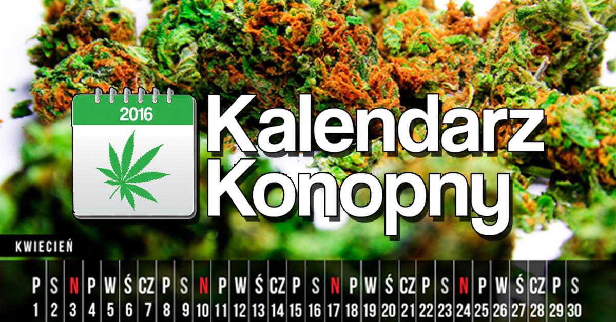 Kalendarz konopny