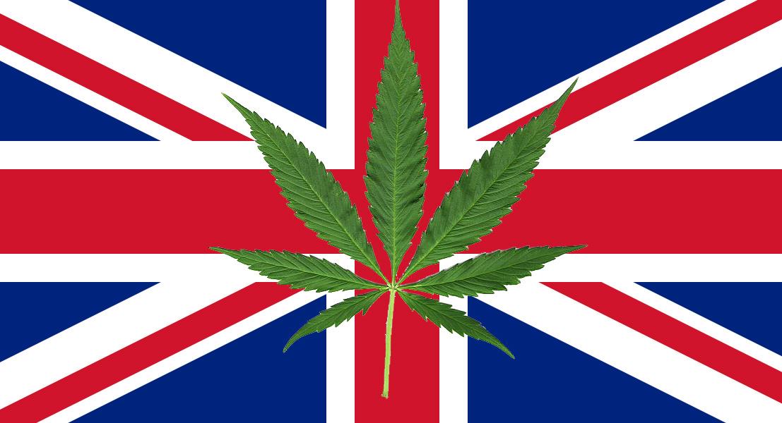 wielka Brytania marihuana