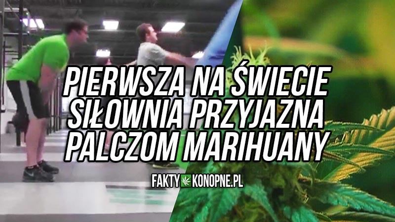 siłownia przyjazna palaczom marihuany