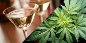 Badania potwierdzają, że alkohol zwiększa agresję, podczas gdy marihuana ją redukuje