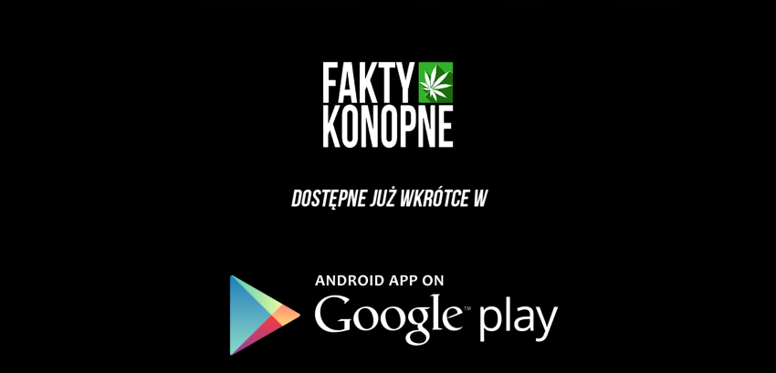 aplikacja fakty konopne na androida