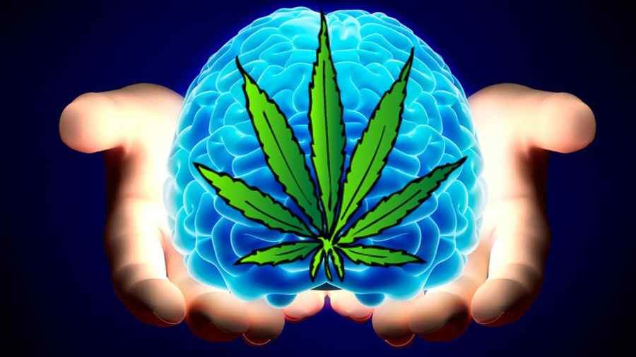 osoby z wysokim iq częściej palą marihuanę i uprawiają seks