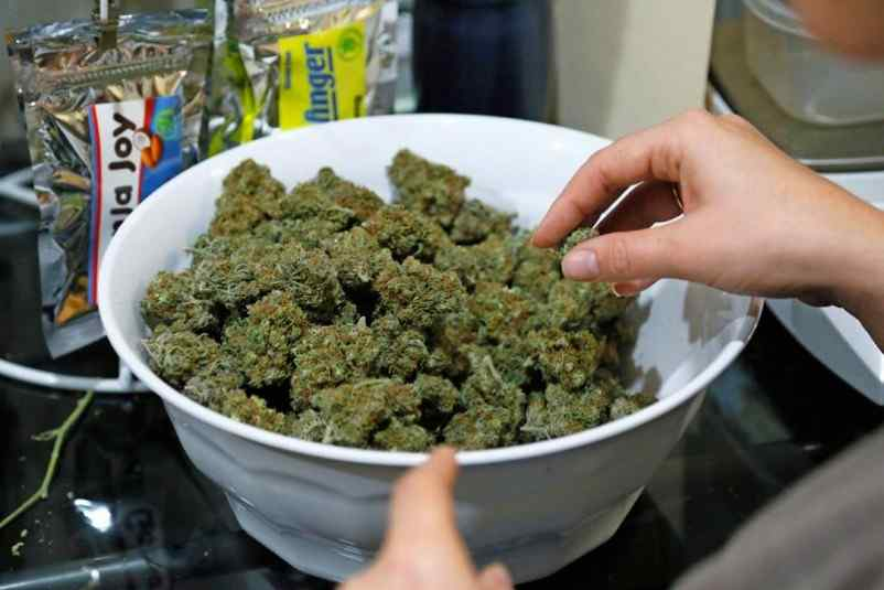 Holandia jest coraz bliżej pełnej legalizacji marihuany
