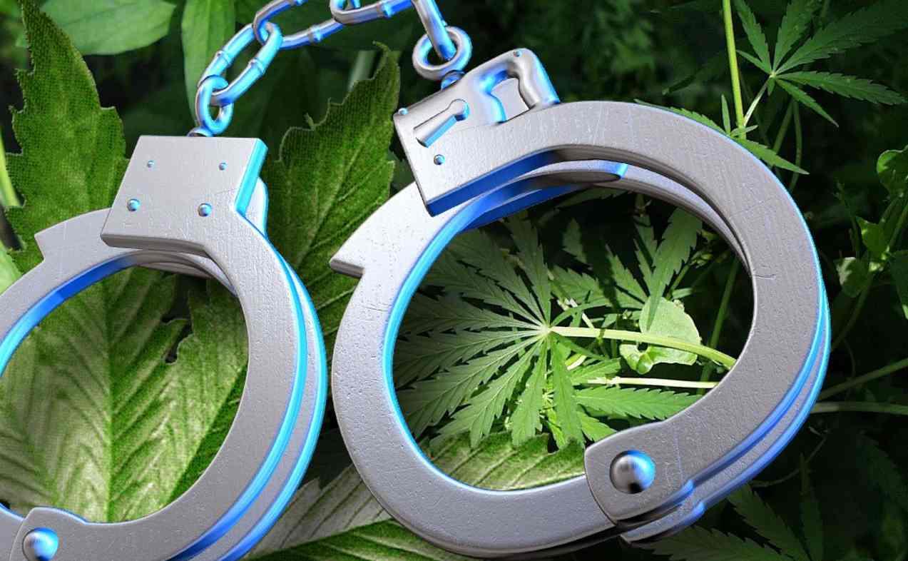 liczba aresztowań za posiadanie marihuany jest większa niż suma aresztowań za przestępstwa związane z przemocą