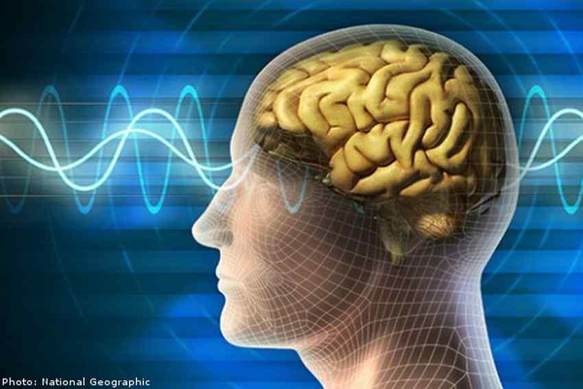 wpływ marihuany na poziom dopaminy