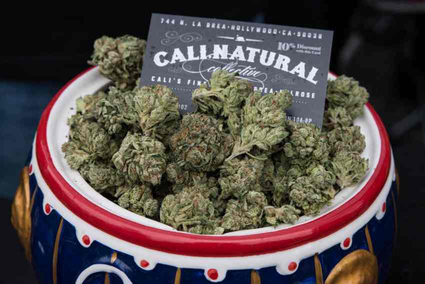 Kalifornia może zarobić miliony dolarów na legalizacji mairuhany