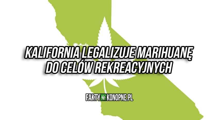 kalifornia zalegalizowała marihuanę co celów rereacyjnych