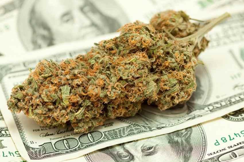 kolejny rekord sprzedaży legalnej marihuany w Wasyzngtonie