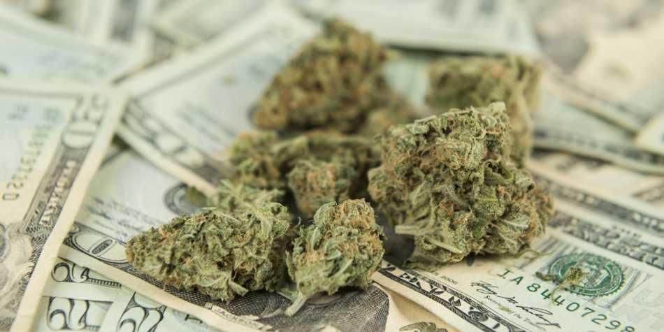 Oregon zarabia z podatków od sprzedaży marihuany