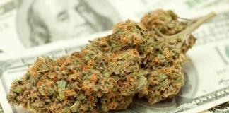 Sprzedaż marihuany w Waszyngtonie