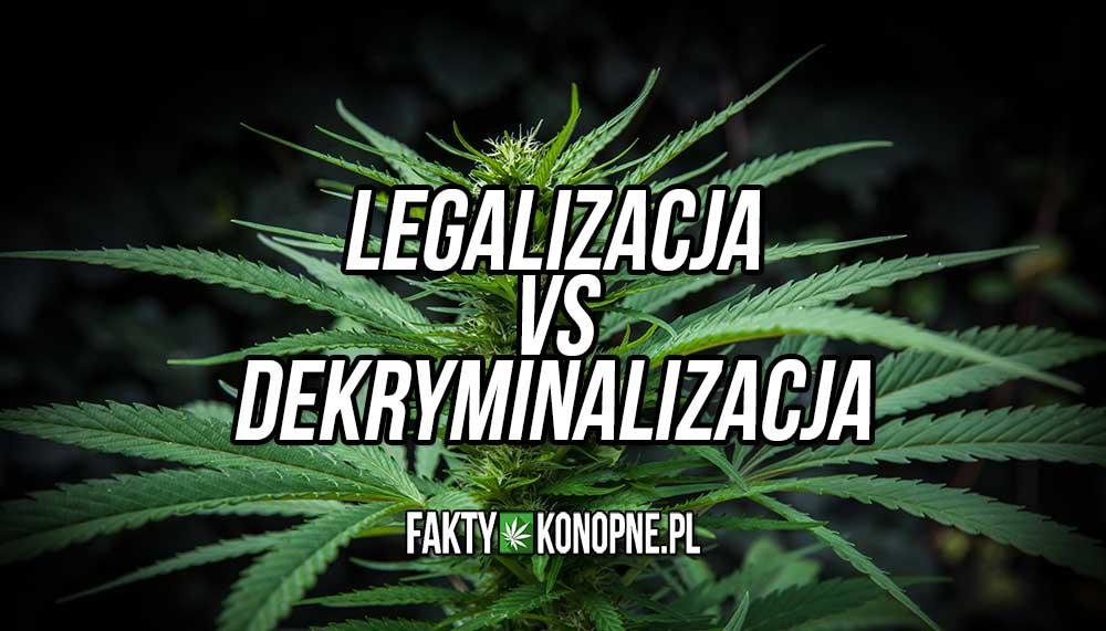 Różnice między legalizacją a dekryminalizacją marihuany