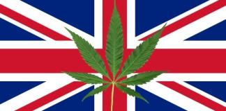 legalizacja marihuany w Wielkiej Brytanii