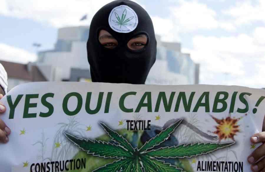 legalizacja marihuany we francji