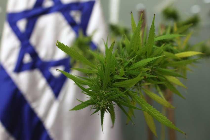 Izrael dekryminalizuje marihuanę do celów rekreacyjnych