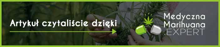 portal poświęcony medycznej marihuanie