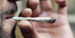efekty palenia marihuany w młodości