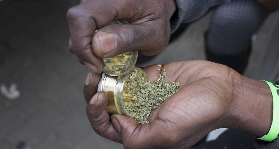 Republika Południowej Afryki dekryminalizuje marihuanę. Jej zakaz jest niezgodny z konstytucją