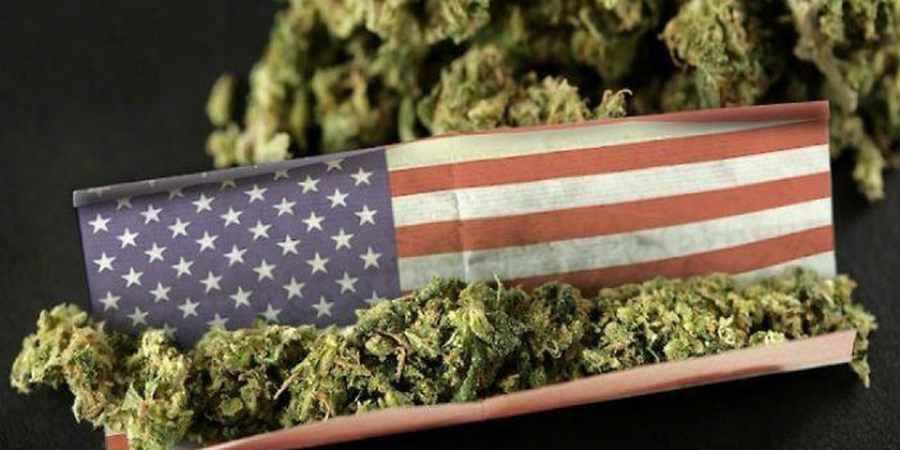 Legalizacja marihuany na poziomie federalnym może przynieść miliardy dolarów zysku