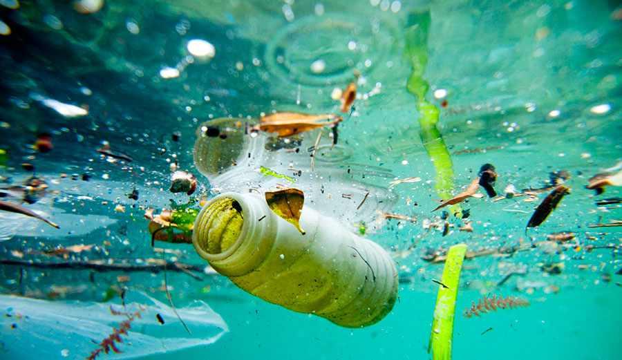Znalezione obrazy dla zapytania konopie i plastik