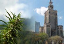 statystyki mówią, że każdego weekendu w Warszawie spalane jest 1.5 tony marihuany
