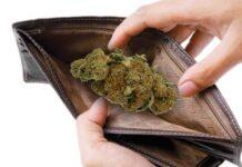 15-letnia mieszkanka Niepołomic zgubiła portfel z marihuaną