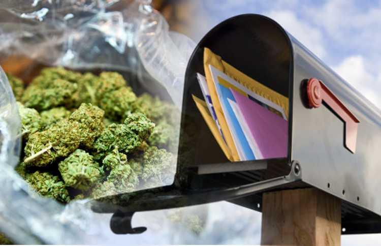 20-latek spod Poznania wysyłał marihuanę pocztą