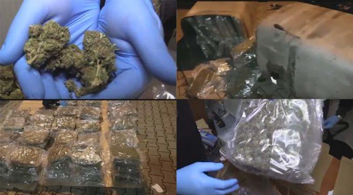 Przemyt 57 kilogramów marihuany z Hiszpanii do Warszawy