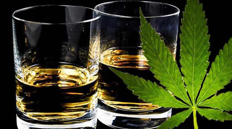 Dlaczego marihuana jest bezpieczniejsza od alkoholu