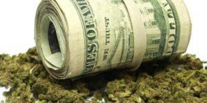 Legalizacja marihuany w USA może wygenerować 106 miliardów dolarów i milion nowych miejsc pracy