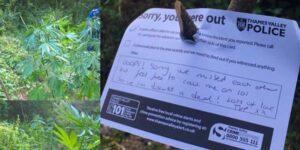 Policja znalazła uprawę marihuany i zostawiła wiadomość dla jej właściciela