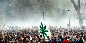 Sprzedaż legalnej marihuany 20 kwietnia (420) przekroczyła wszelkie rekordy