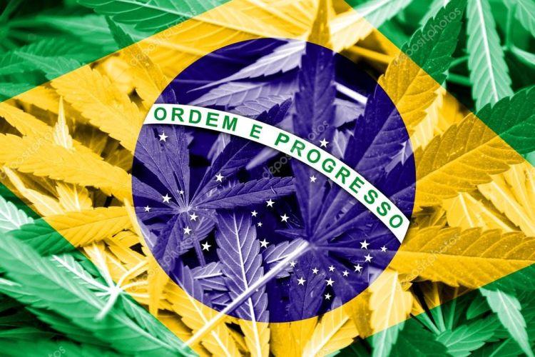 Brazylia walczy o legalizacje marihuany