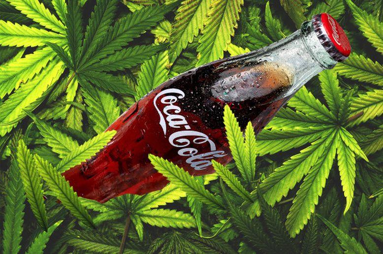 Coca Cola stworzy napój z marihuany
