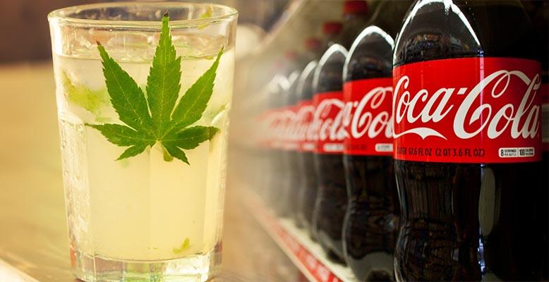 Coca Cola prowadzi rozmowy z producentem marihuany. Chce stworzyć napój na bazie konopi