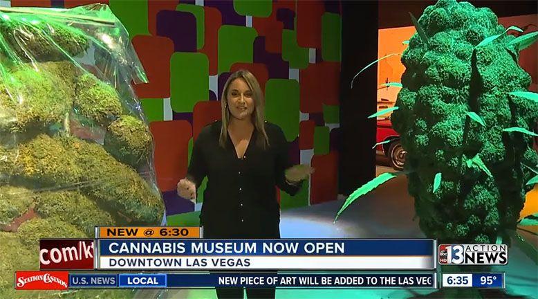 Interaktywne muzeum marihuany otwarto w Las Vegas