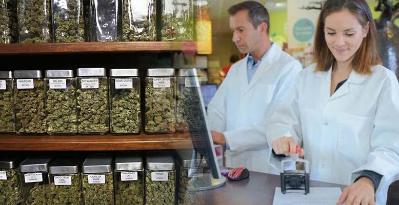 Medyczna marihuana będzie dostępna w aptekach. Jaka będzie cena?