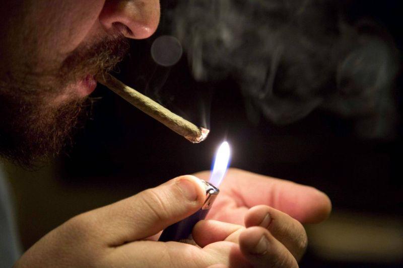 20,000 osób zgłosiło się do pracy jako terster i koneser marihuany
