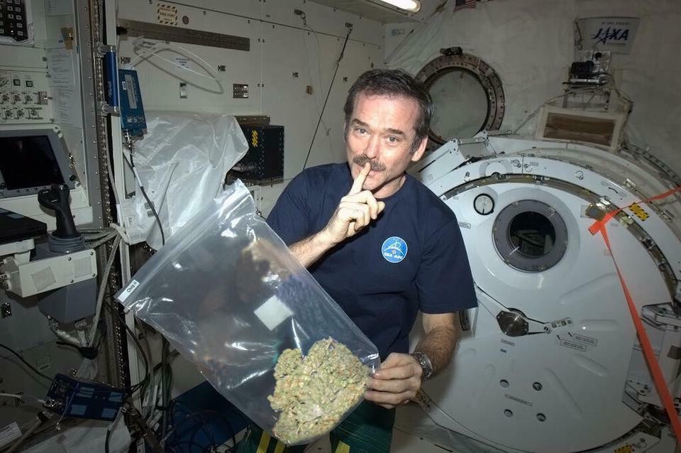 Chris Hadfield z marihuaną w kosmosie