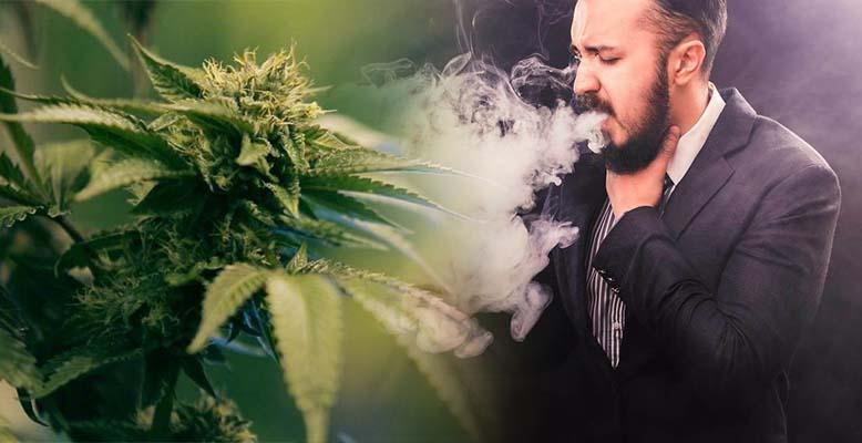 Czy kaszlenie poprawia działanie marihuany?