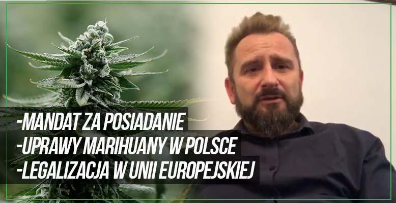 Liroy o legalizacji marihuany w Polsce