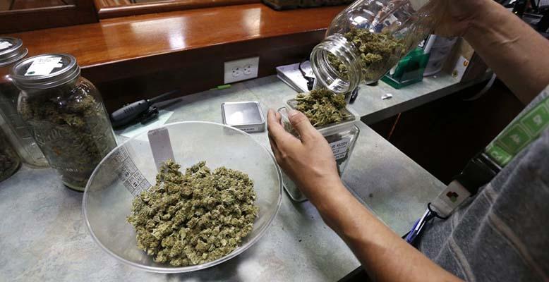 Sprzedaż marihuany w Massachusetts przekroczyła 440,000 dolarów